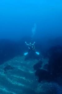 ブログ用 ダイビング